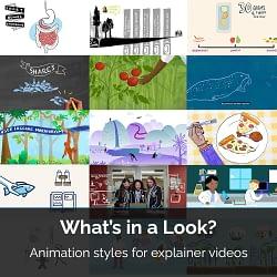 Animation styles, animated explainer videos, animations vancouver bc, animations victoria bc, explainer videos, 2D animation, chalkboard animations, motion graphics animator