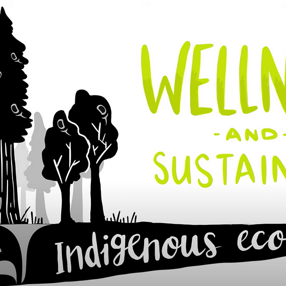 whiteboard animation, whiteboard video, Indigenous economies video, wellness and sustainable economies