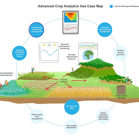 interactive infographic, crop analytics, enabling crop analytics at scale, ECAAS, agriculture illustration, small holder farmers, agriculture data, satellite data